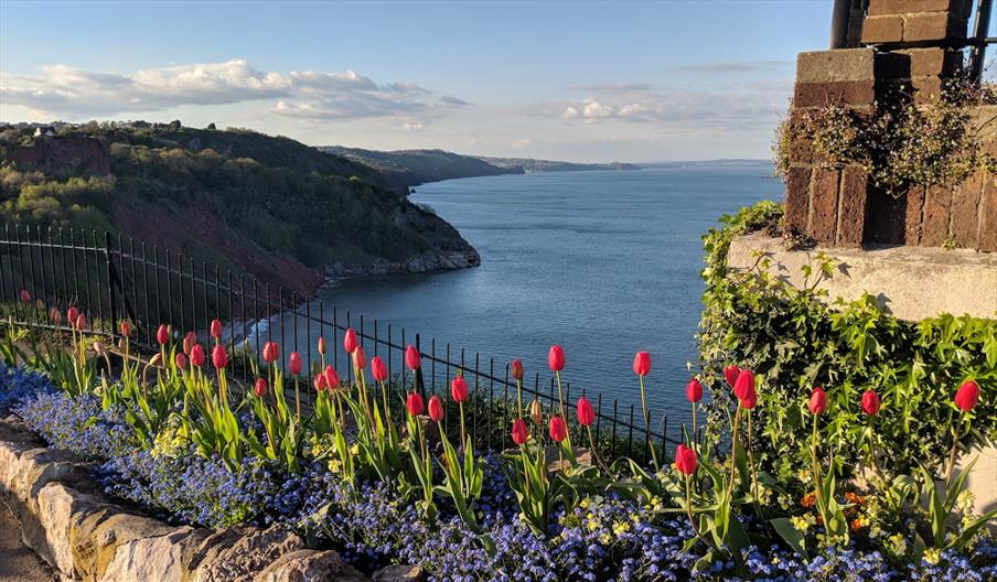 The stunning view from Babbacombe Downs in Torquay, Devon