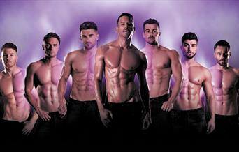 The Dreamboys, Princess Theatre, Torquay, Devon