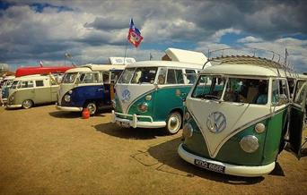 Dubs at the Beach, Paignton, Devon