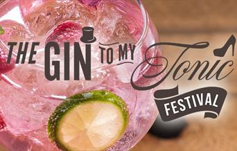The Gin to My Tonic Festival, Riviera Centre, Torquay, Devon