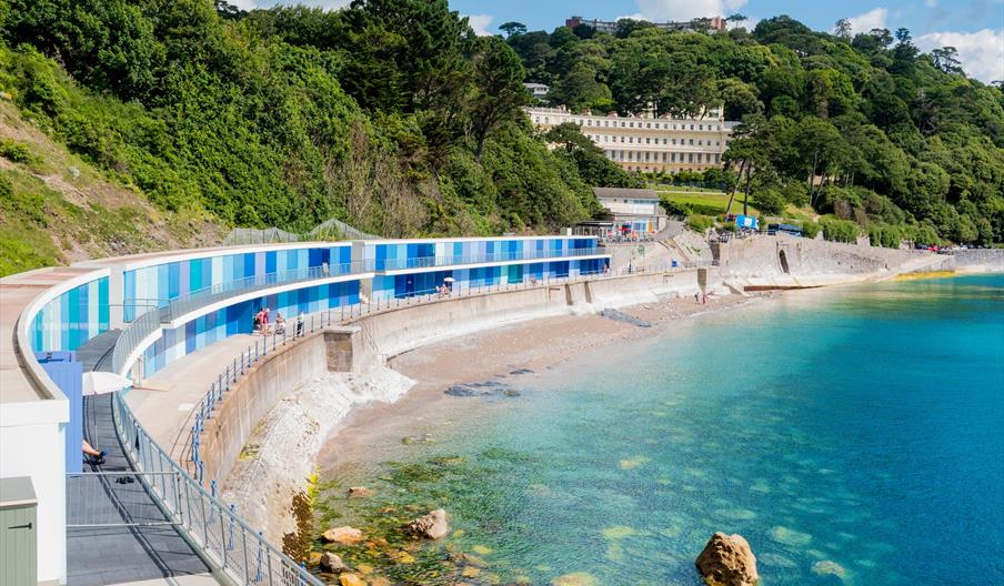 Dog Friendly Attractions Torquay