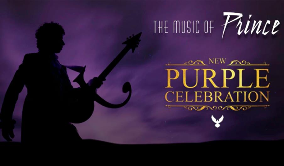 The Music of Prince - New Purple Celebration, Princess Theatre, Torquay, Devon