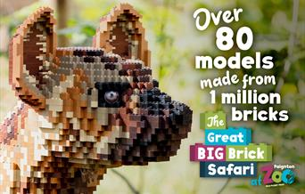 The Great Big Brick Safari - Paignton Zoo, Paignton, Devon